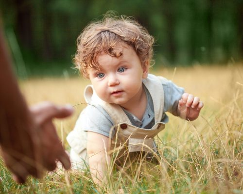 The little baby or year-old child on the grass in sunny summer day.